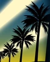 megafortune-palms.jpg