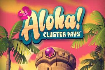 aloha mr green