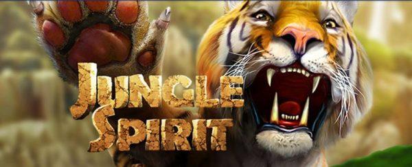 lohikäärme jungle spirit